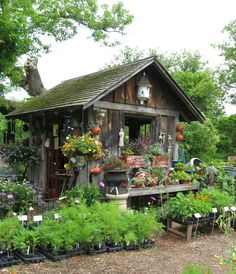 https://flic.kr/p/89moWP | Garden Shed | Garden Shed at Monches Farm