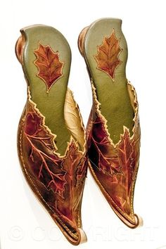 Leather Fairy Shoes