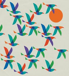 Adrian Johnson #adrianjohnson #grafica #animali #uccello #pattern #multiply #illustrazione