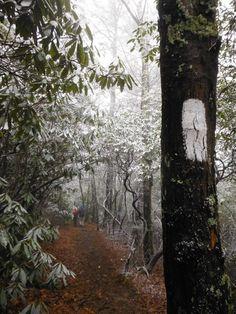 Appalachian Trail near Davenport Gap