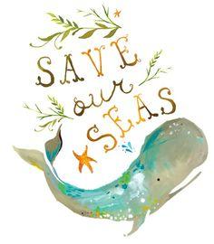 Salvar nuestros mares.