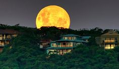 Super moon tonight: 14% larger because of it's closeness to Earth