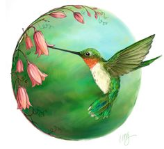 Hummingbird illustration by Lisa M. Griffin, created in celebration of Dot Day 2014 #DotDay