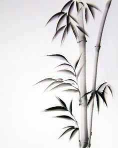 Japanese Bamboo Drawings | Hand Painted Sumi Art