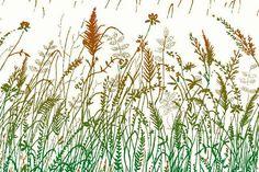 Fototapety vliesové - Vliesová fototapeta Dimex Hnědozelená tráva XL-333 | 330x220 cm