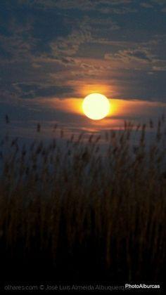 Paisagem Natural/Sol ou lua?