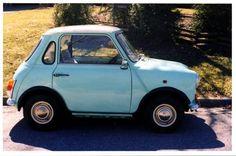 1975 Mini Chopped!