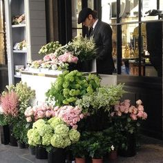 "3,251 gilla-markeringar, 37 kommentarer - Melissa Penfold (@melissa_penfold) på Instagram: ""Flowers as flowers should be ... The knockout flower stand outside @dior in London's Covent Garden.…"""