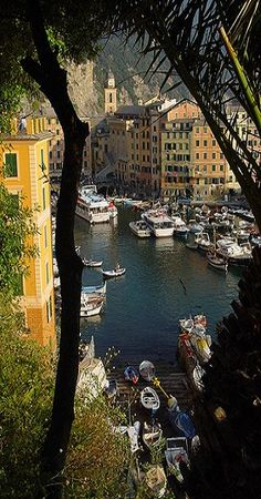 Camogli on the Cinque Terre of Liguria, Italy • photo: lrene on Flickr