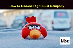 8 Tips to Choose the Right SEO Company from Marketing Calls and Emails.