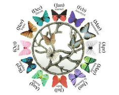 Birth month butterflies                                                                                                                                                      More
