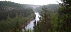 В министерстве природных ресурсов и экологии сообщили, что в этом году к международной акции «Час Земли» присоединятся российские национальные парки...