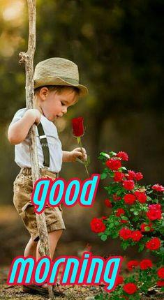 2019 good morning S. Good Morning Gift, Good Morning Picture, Good Morning Greetings, Morning Pictures, Good Morning Images, Good Day, Good Night, Good Afternoon, Color Street