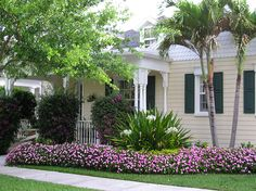Florida home and landscaping