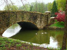 130 Charlotte North Carolina Ideas North Carolina Charlotte Queen City