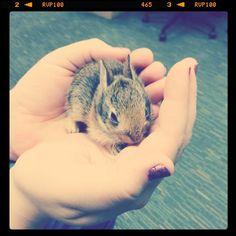 Way too cute :)