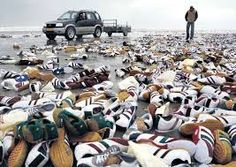 aangespoelde schoenen terschelling - Google zoeken