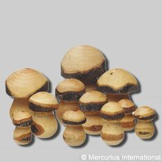 Woodturning Idea: chess men from raw wood?
