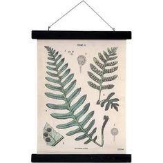 HK-living Schoolplaat Botanisch geprint katoen hout 30x40x2,5cm