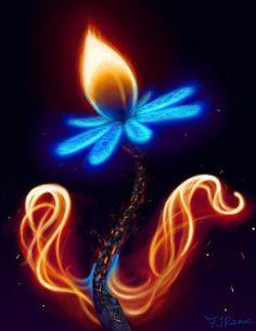 •♥• Fire Flower by fr3rdsky