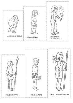 Ce lien est une frise imagée sur l'évolution de l'homme. L