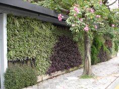 Pátio Batel   WallGreen – Jardins Verticais