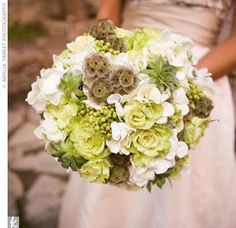 Green wedding flower inspiration- beautiful bridal bouquet with pops of white. Green Hydrangea, Green Flowers, Green Bouquets, Hydrangea Bouquet, Flower Colors, White Hydrangeas, Flower Ideas, Bride Bouquets, Bridesmaid Bouquet