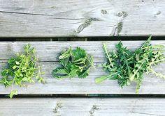Lekker koken met A.Vogel: ontdek onze gezonde recepten Healthy Recipes, Healthy Food, Smoothie, Herbs, Blog, Healthy Foods, Healthy Eating Recipes, Smoothies, Herb