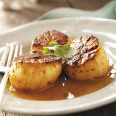 Fancy Entrees Recipes