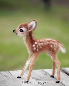 felted wool animals Fawn The kid is made to order. # Fawn The kid is made to order. Cute Animals Images, Baby Animals Pictures, Cute Animal Pictures, Cute Funny Animals, Cute Dogs, Cute Babies, Baby Animals Super Cute, Cute Little Animals, Felt Animals