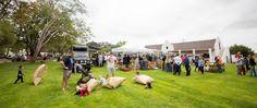 Spier Werf Market | Spier Wine Farm