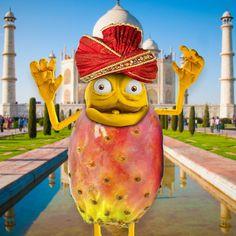 FICO D'INDIA!