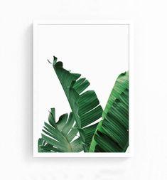 Tropical Leaf, Printable Art, Monstera leaves, Tropical