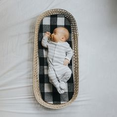 One Month old baby Skipper - Moses Basket & Buffalo Check