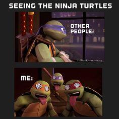 ooh gosh !!!!! Raphael looks like me 0.0 Mikey looks like my best friend and Donnie looks like my sister !!!! so creppy !!! and kinda cute !!! :3