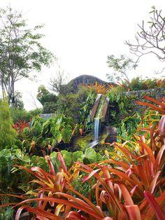 gardens designed by raymond jungles in nevis    garden design magazine