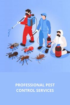 A home is a lifetime asset, owning which even adds to your significant responsibilities. Bear in mind that your household will face the foremost threat from the pest infestation. Pests come in equipped with their harmful activities. Pest Control Services, Household, Bear, Activities, Face, Bears, Faces, Facial