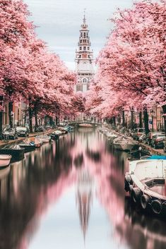 How beautiful is the foliage in Amsterdam? captures a peaceful afternoon in the city using infrared photography. Have you strolled the streets of Amsterdam before? Tell us your experience! Beautiful Places To Travel, Cool Places To Visit, Places To Go, Wonderful Places, Europe Places, Beautiful Hotels, Stunningly Beautiful, Infrared Photography, Travel Aesthetic