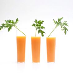 Check this out: Not Your Garden Variety Cocktail…. https://re.dwnld.me/3s69W-not-your-garden-variety-cocktail