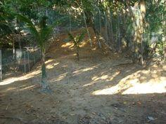Área em frente ao canil, agora cercada garantia da segurança dos cães.