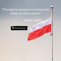 Poznajemy ojczyznę w momencie... - WielkieSłowa.pl - Najlepsze cytaty w Internecie Albert Camus, Movies, Movie Posters, Films, Film Poster, Cinema, Movie, Film, Movie Quotes