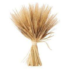 Preserved Wheat Sheaf