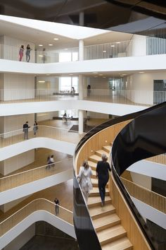 Architecture in Ascendance: innovative staircase design