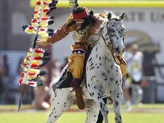 Chief Osceola and Renegade Pictures | Chief Osceola & Renegade Go 'Noles!!!! | My school, My heart FSU