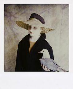 Sibylle Bergemann, polaroids