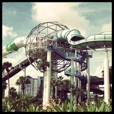 Wet 'N Wild in Orlando, FL