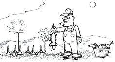 How Dachshunds are born