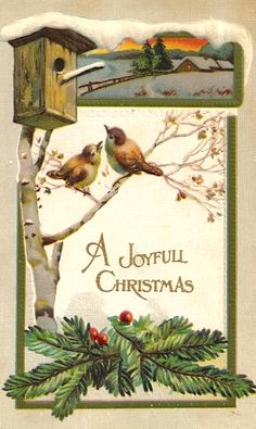 Vintage Christmas Postcard/ Birds and Birdhouse