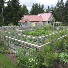 Awesome A Deer Proof Vegetable Garden Plan | Garden Planning, Vegetable Garden And  Gardens