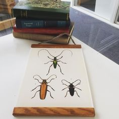 Longhorn beetles from Naturlaboratoriet. Cool exotic insect in a fitting frame, for that retro feeling.